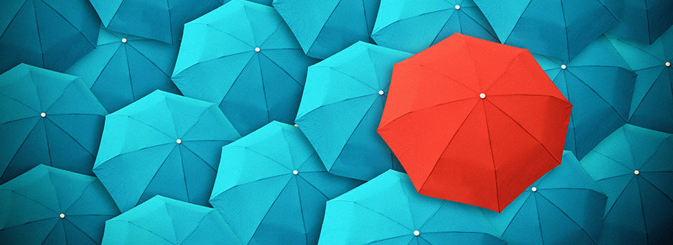 Accessible Website Services Blue and Red Umbrellas