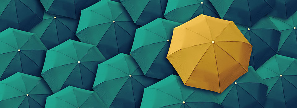 Green Yellow Umbrellas Accessible Website Services