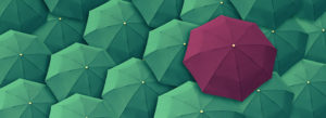 Accessible Website Services Purple Green Umbrellas