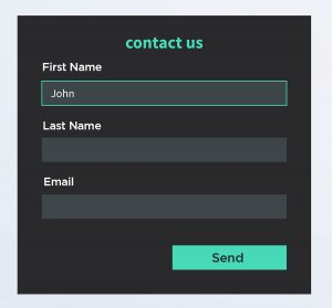 Sample HTML form fields with labels