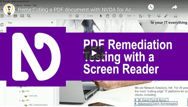 Video Dax Castro Remediate PDF with NVDA